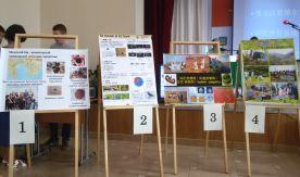 Международный молодежный экологический форум во ВГУЭС: мы определяем будущее лицо природы
