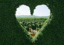 ТОП-5 гаджетов для влюблённых